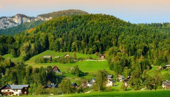 Der Bayerische Wald