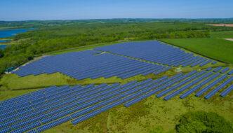 Positive und negative Auswirkungen von Solarparks auf die Artenvielfalt